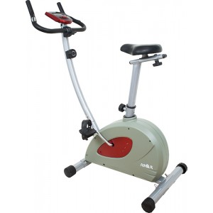 INDOOR BIKE AMILA KH-695