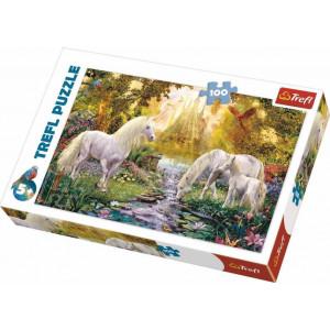 TREFL PUZZLE 100PCS SECRET GARDEN 817-16349