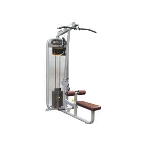 Lat Pulldown / Seated Row PL9002