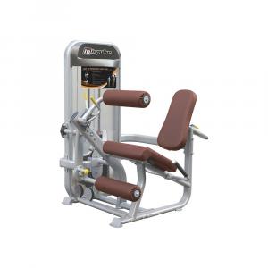 Leg Extension / Leg Curl PL9019 (70kg)