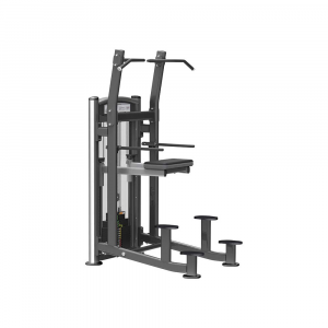 Weight Assisted Chin/Dip Combo IT9320