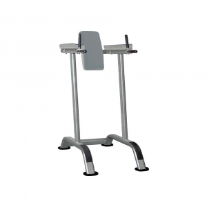 Vertical Knee Raise IT7010