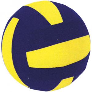 Μπάλα Βόλεϋ