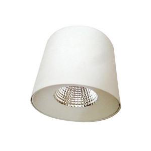 ΦΩΤΙΣΤΙΚΟ COB LED ΕΞΩΤΕΡΙΚΟ ΛΕΥΚΟ 40° Φ181 30W 4000K 145-68301