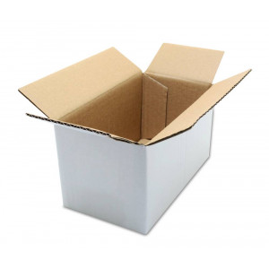 Packaging Carton No 0 (17 x 9.5 x 9.5 cm) 21039