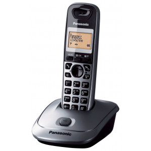 Ασύρματο Ψηφιακό Τηλέφωνο Panasonic KX-TG2511 (EU) Ασημί 5025232546299
