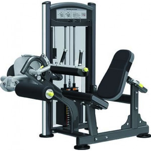 Seated Leg Curl IT9306